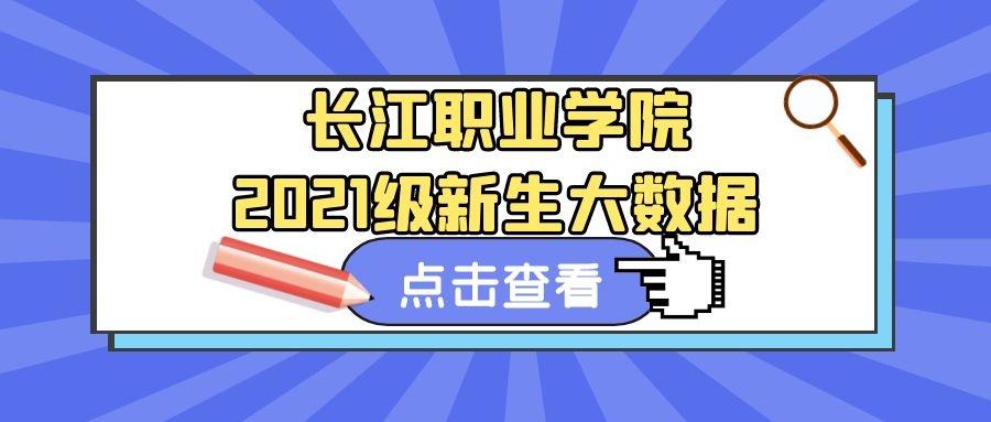 2021级长江职业学院新生大数据